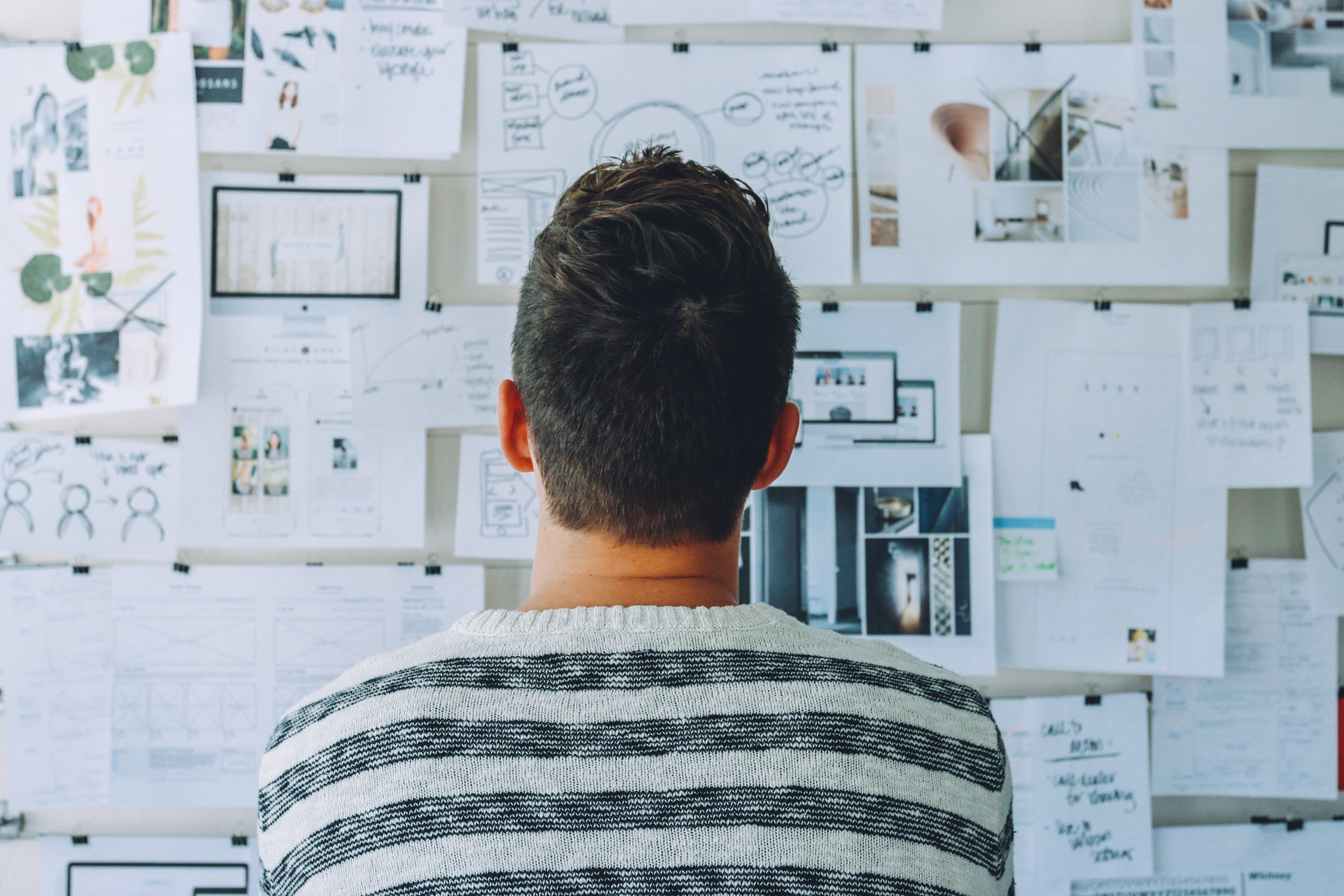 Zakaj izbrati WordPress
